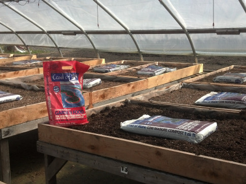 Beds amended with Coast of Maine Organic Products